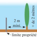 voisinage coupe et taille de l arbre ou de la haie du. Black Bedroom Furniture Sets. Home Design Ideas