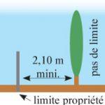 Voisinage coupe et taille de l arbre ou de la haie du voisin site officiel de la commune de - Article 673 code civil ...