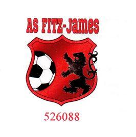 logo ASFJ foot
